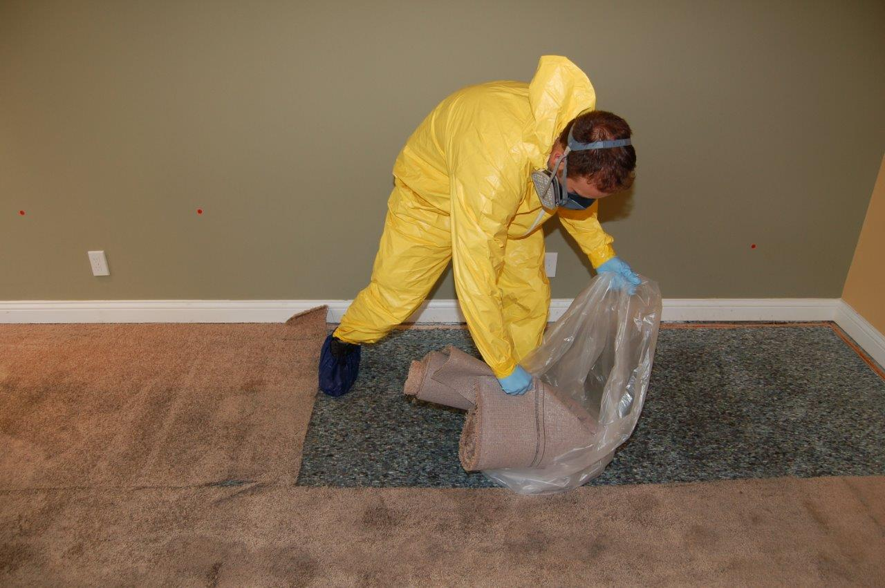 Sewage Clean Up-Boca Raton Mold Remediation & Water Damage Restoration Services-We offer home restoration services, water damage restoration, mold removal & remediation, water removal, fire and smoke damage services, fire damage restoration, mold remediation inspection, and more.